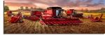 Celebrating 100 Years of Harvesting Excellence